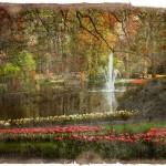 Keukenhof Gardens Forgotten Postcard