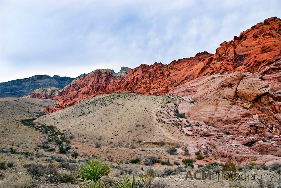 red rock las