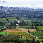 The Alpilles Mountain Range
