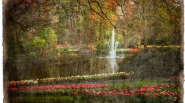 Keukenhof Gardens Forgotten Postcard