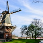 The Keukenhof Windmill