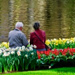 Senior Couple at Keukenhof Gardens