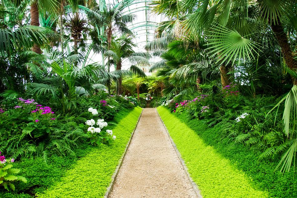 Hydroponic Greenhouse Gardening, Used