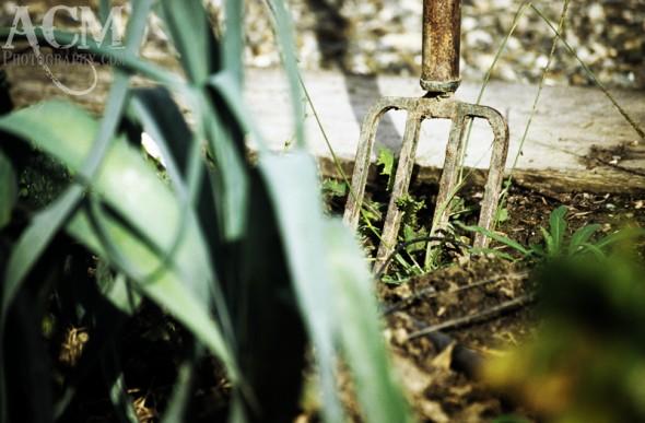 Garden Fork