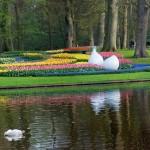 Keukenhof Gardens Panorama
