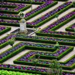 Chateau Villandry Kitchen Garden