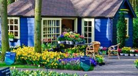 Keukenhof Tulip Gardens 2010