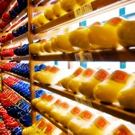Rows of Wooden Shoes Cheese in Holland